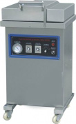 DZ-400-2L Vacuum Packaging Machine